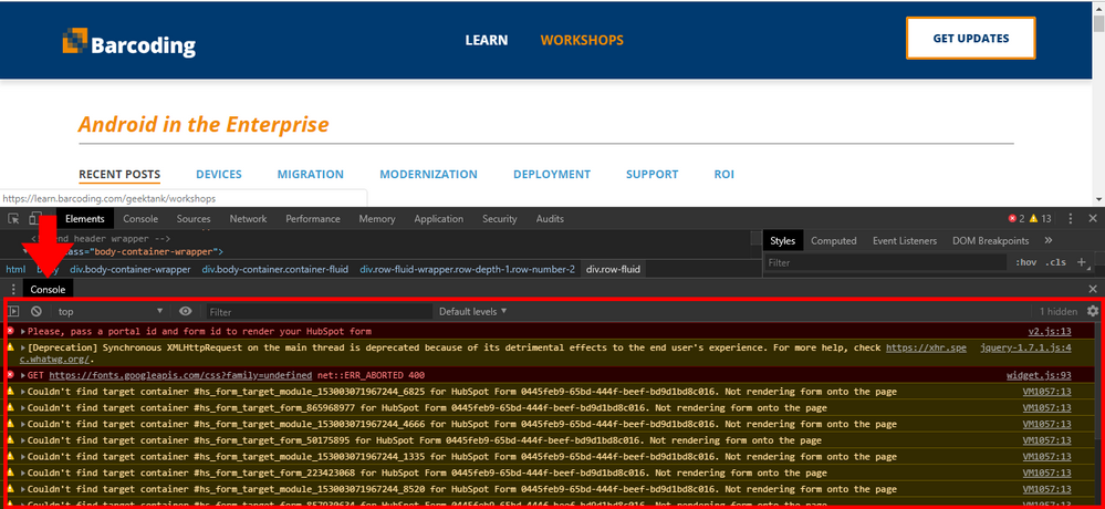 HubSpot Page: Console Errors (form)