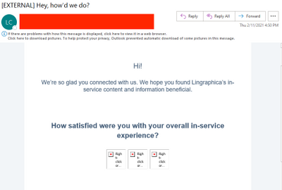 Feedback Survey Image Issues.png