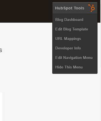 hs-blog template.PNG