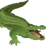 Crocodilemarket